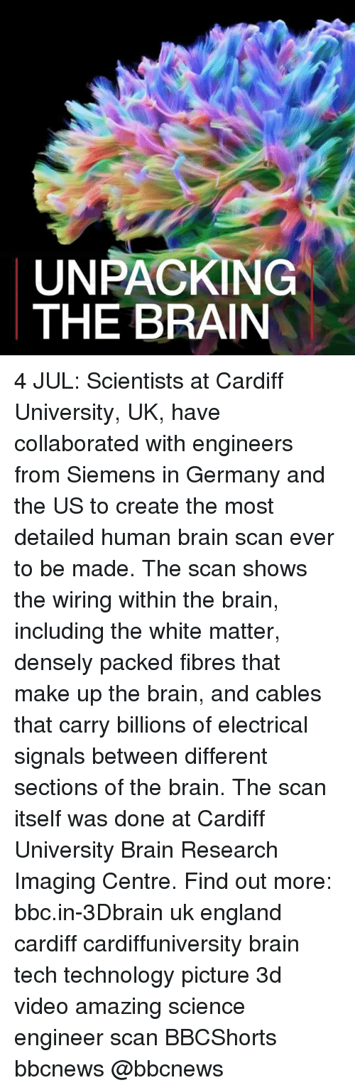England, Memes, and Brain: UNPACKING  THE BRAIN 4 JUL: Scientists at Cardiff University, UK, have collaborated with engineers from Siemens in Germany and the US to create the most detailed human brain scan ever to be made. The scan shows the wiring within the brain, including the white matter, densely packed fibres that make up the brain, and cables that carry billions of electrical signals between different sections of the brain. The scan itself was done at Cardiff University Brain Research Imaging Centre. Find out more: bbc.in-3Dbrain uk england cardiff cardiffuniversity brain tech technology picture 3d video amazing science engineer scan BBCShorts bbcnews @bbcnews