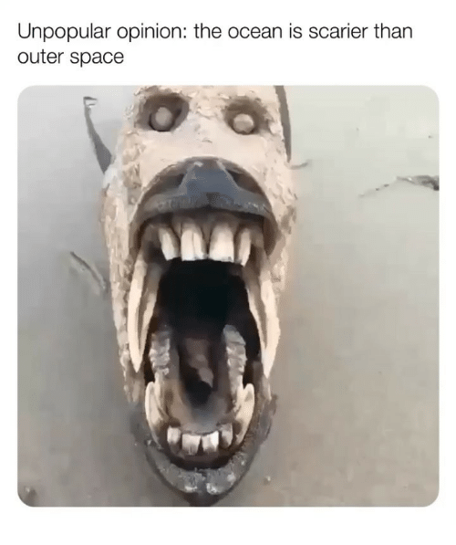 Memes, Ocean, and Space: Unpopular opinion: the ocean is scarier than  outer space