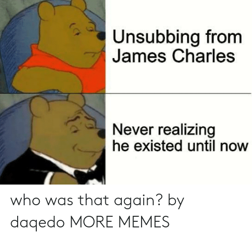 Dank, Memes, and Target: Unsubbing from  James Charles  Never realizing  he existed until now who was that again? by daqedo MORE MEMES
