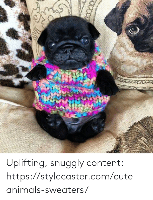 sweaters: Uplifting, snuggly content: https://stylecaster.com/cute-animals-sweaters/