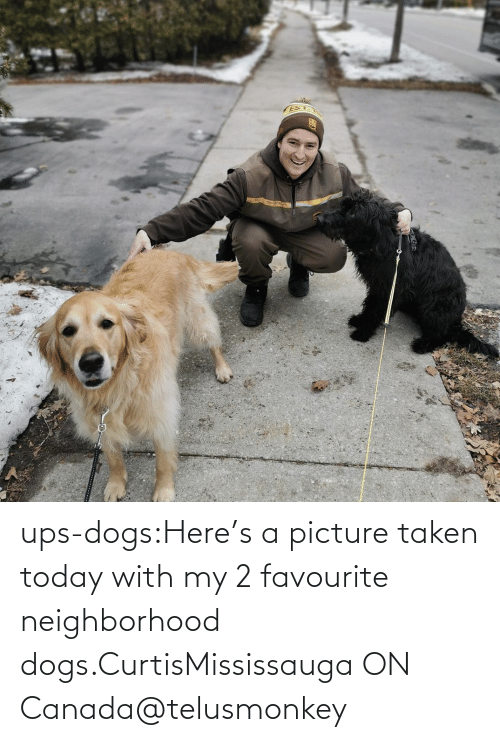 A Href: ups-dogs:Here's a picture taken today with my 2 favourite neighborhood dogs.CurtisMississauga ON Canada@telusmonkey