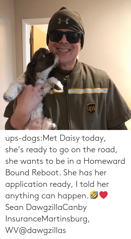 go on: ups-dogs:Met Daisy today, she's ready to go on the road, she wants to be in a Homeward Bound Reboot. She has her application ready, I told her anything can happen.🤣❤️ Sean DawgzillaCanby InsuranceMartinsburg, WV@dawgzillas