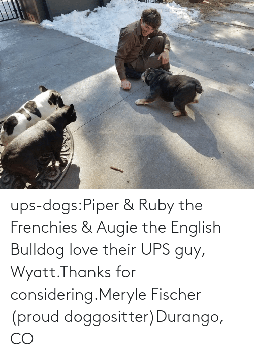 English: ups-dogs:Piper & Ruby the Frenchies & Augie the English Bulldog love their UPS guy, Wyatt.Thanks for considering.Meryle Fischer (proud doggositter)Durango, CO