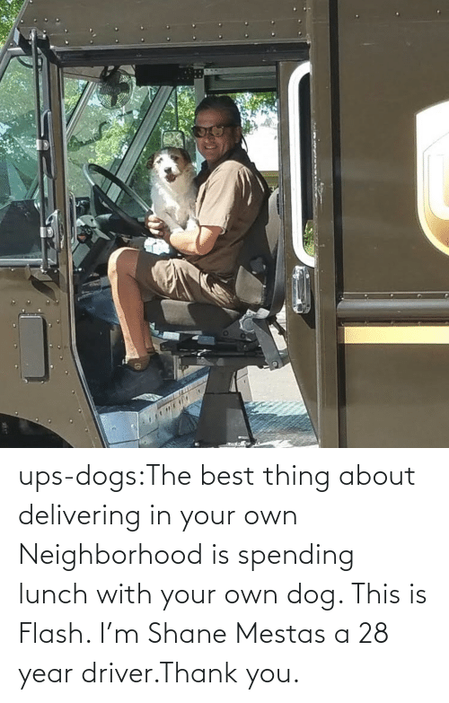 driver: ups-dogs:The best thing about delivering in your own Neighborhood is spending lunch with your own dog. This is Flash. I'm Shane Mestas a 28 year driver.Thank you.