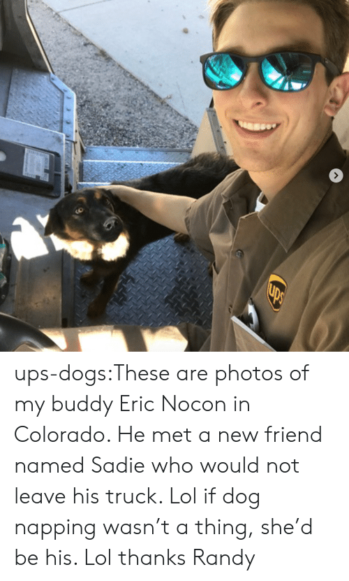 napping: ups-dogs:These are photos of my buddy Eric Nocon in Colorado. He met a new friend named Sadie who would not leave his truck. Lol if dog napping wasn't a thing, she'd be his. Lol thanks Randy