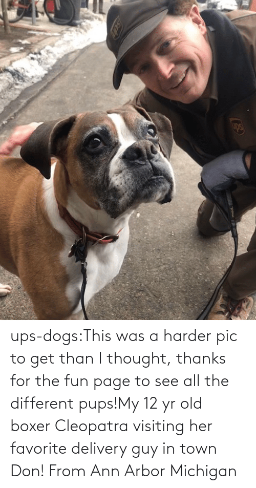 Thanks For The: ups-dogs:This was a harder pic to get than I thought, thanks for the fun page to see all the different pups!My 12 yr old boxer Cleopatra visiting her favorite delivery guy in town Don! From Ann Arbor Michigan