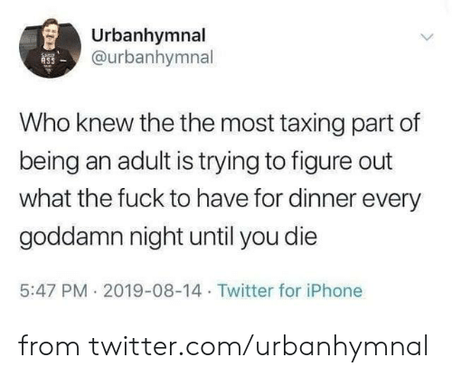 the the: Urbanhymnal  @urbanhymnal  ASS  Who knew the the most taxing part of  being an adult is trying to figure out  what the fuck to have for dinner every  goddamn night until you die  5:47 PM 2019-08-14 Twitter for iPhone from twitter.com/urbanhymnal
