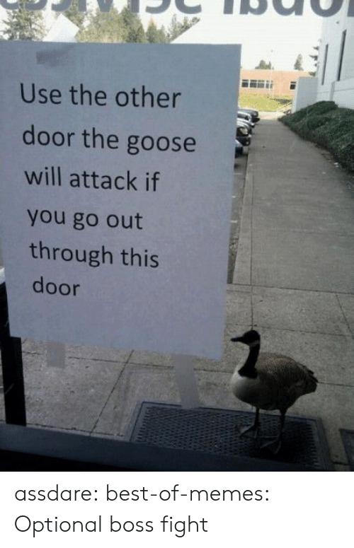Best Of Memes: Use the other  door the goose  will attack if  you go out  through this  door assdare:  best-of-memes:  Optional boss fight
