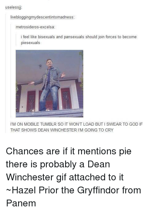 Bisexu: useless  live bloggingmydescentintomadness  metrosideros-excelsa  i fee  like bisexuals and pansexuals should join forces to become  piesexuals  l'M ON MOBILE TUMBLR SO IT WON'T LOAD BUTISWEAR TO GOD IF  THAT SHOWS DEAN WINCHESTER IM GOING TO CRY Chances are if it mentions pie there is probably a Dean Winchester gif attached to it ~Hazel Prior the Gryffindor from Panem