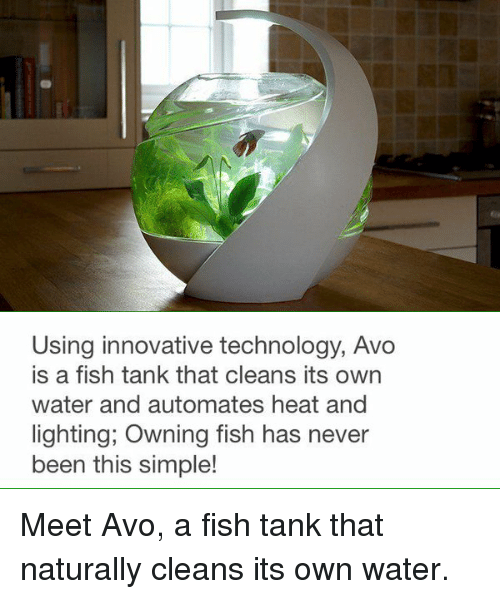 autom: Using innovative technology, Avo  is a fish tank that cleans its own  water and automates heat and  lighting, Owning fish has never  been this simple! Meet Avo, a fish tank that naturally cleans its own water.