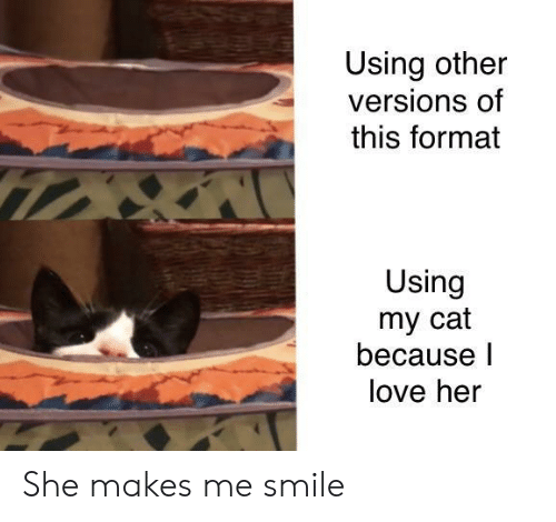Love, Smile, and Her: Using other  versions of  this format  Using  my cat  because l  love her She makes me smile