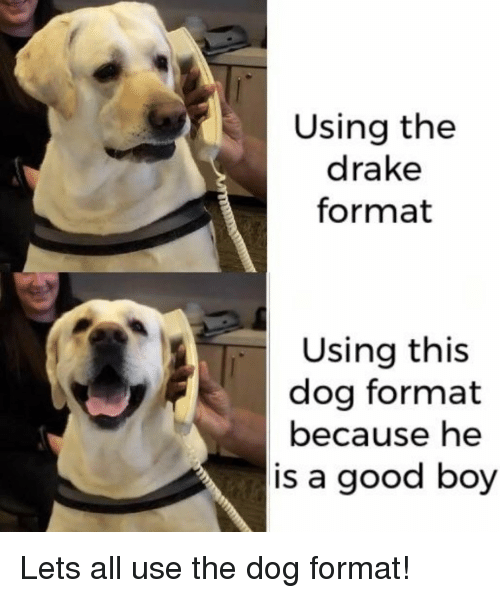 Drake, Good, and Boy: Using the  drake  format  Using this  dog format  because he  is a good boy Lets all use the dog format!