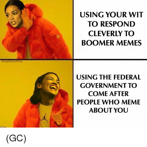 Who Meme: USING YOUR WIT  TO RESPOND  CLEVERLY TO  BOOMER MEMES  erlyvire  realDa  USING THE FEDERAL  GOVERNMENT TO  COME AFTER  PEOPLE WHO MEME  ABOUT YOU (GC)