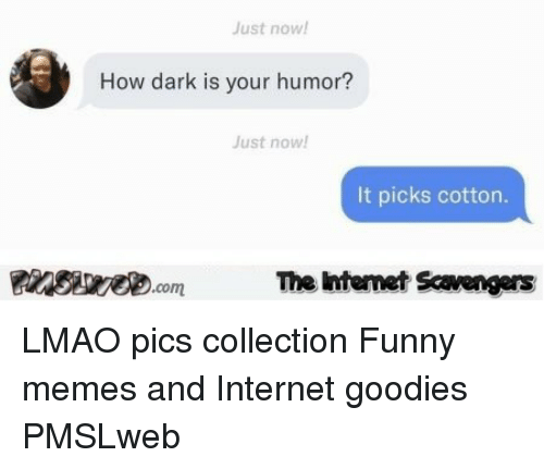 goodies: ust now  How dark is your humor?  Just now!  It picks cotton.  Pinsive.comThe Iintemet Scavengers <p>LMAO pics collection  Funny memes and Internet goodies  PMSLweb </p>