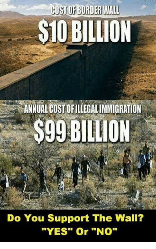 """Memes, 🤖, and Yes: USTOP BORDER WIALL  S10 BILLION  ANNUALOUSTOFILLEGALIMMIGRATION  $99 BILLION  Do You Support The Wall?  """"YES"""" Or """"NO"""""""