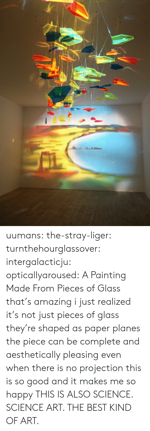 Just Realized: uumans: the-stray-liger:  turnthehourglassover:  intergalacticju:  opticallyaroused: A Painting Made From Pieces of Glass   that's amazing  i just realized it's not just pieces of glass they're shaped as paper planes the piece can be complete and aesthetically pleasing even when there is no projection this is so good and it makes me so happy  THIS IS ALSO SCIENCE. SCIENCE ART. THE BEST KIND OF ART.