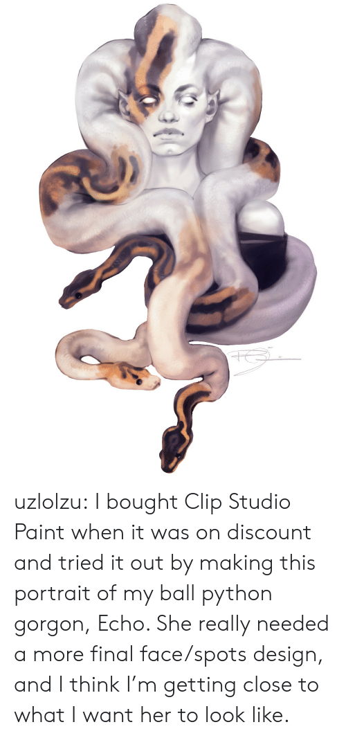 Tumblr, Blog, and Paint: uzlolzu:  I bought Clip Studio Paint when it was on discount and tried it out by making this portrait of my ball python gorgon, Echo. She really needed a more final face/spots design, and I think I'm getting close to what I want her to look like.