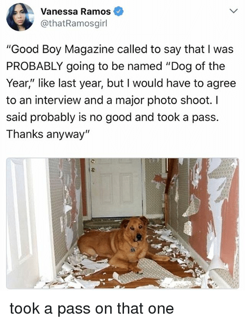 "Good, Relatable, and Boy: Vanessa Ramos  othatRamosgirl  ""Good Boy Magazine called to say that I was  PROBABLY going to be named ""Dog of the  Year,"" like last year, but I would have to agree  to an interview and a major photo shoot. l  said probably is no good and took a pass.  Thanks anyway"" took a pass on that one"