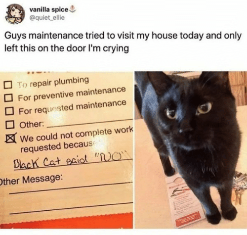 "No Other: vanilla spice  @quiet ellie  Guys maintenance tried to visit my house today and only  left this on the door I'm crying  To repair plumbing  For preventive maintenance  For requested maintenance  Other:  We could not complete work  requested because  Dlach Cat oaiod ""NO  Other Message:  Matn"