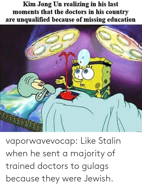 Jewish: vaporwavevocap:  Like Stalin when he sent a majority of trained doctors to gulags because they were Jewish.