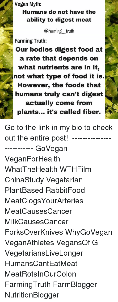 """the vegetarian myth Lierre is a writer, small farmer, and radical feminist activist she is the author of six books, including the vegetarian myth: food, justice, and sustainability, which has been called """"the most important ecological book of this generation."""