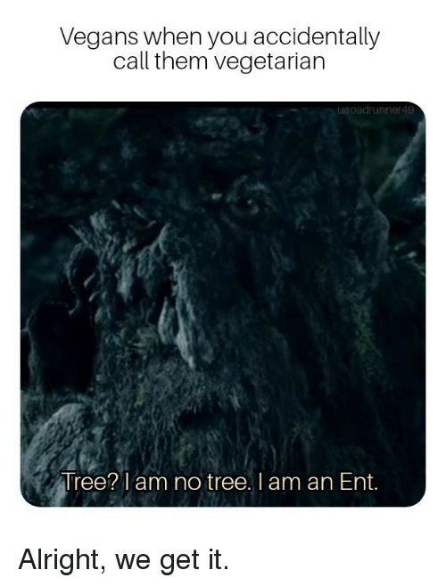 Tree, Vegetarian, and Alright: Vegans when you accidentally  call them vegetarian  roadrunner49  Tree? am no tree. I am an Ent. Alright, we get it.