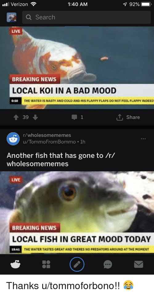 Bad, Mood, and Nasty: Verizon  1:40 AM  92%  Q Search  LIVE  BREAKING NEWS  LOCAL KOI IN A BAD MOOD  THE WATE  IS NASTY AND COLD AND HIS PLA.pY FLA,S DO NOT FEEL FLAPPY INDEED  39  1  Share  r/wholesomememes  u/TommoFromBommo .1h  990  Another fish that has gone to /r/  wholesomememes  LIVE  BREAKING NEWS  LOCAL FISH IN GREAT MOOD TODAY  19244  THE WATER TASTES GREAT AND THERES NO PREDATORS AROUND AT THE MOMENT