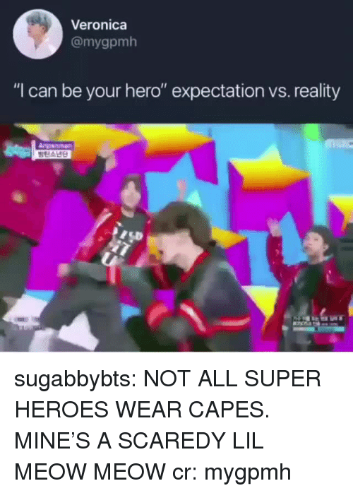 """expectation vs reality: Veronica  @mygpmh  """"I can be your hero"""" expectation vs. reality  Anpanman sugabbybts: NOT ALL SUPER HEROES WEAR CAPES. MINE'S A SCAREDY LIL MEOW MEOW cr: mygpmh"""