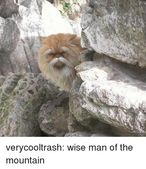 the mountain: verycooltrash: wise man of the mountain