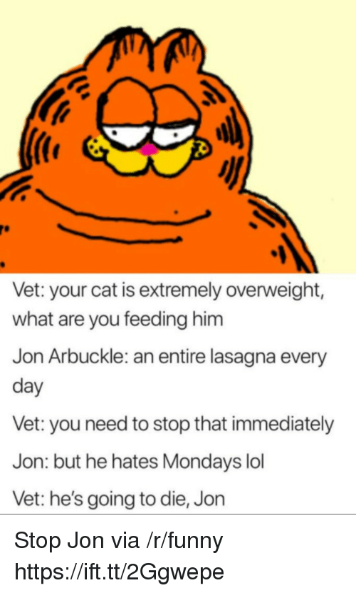 Funny, Lol, and Mondays: Vet: your cat is extremely overweight,  what are you feeding him  Jon Arbuckle: an entire lasagna every  day  Vet: you need to stop that immediately  Jon: but he hates Mondays lol  Vet: he's going to die, Jon Stop Jon via /r/funny https://ift.tt/2Ggwepe