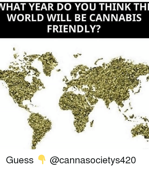 Memes, Guess, and World: VHAT  YEAR DO YOU THINK TH  WORLD WILL BE CANNABIS  FRIENDLY? Guess 👇 @cannasocietys420