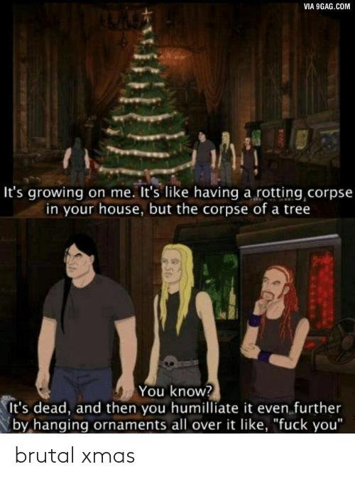 "Brutal: VIA 9GAG.COM  It's growing on me. It's like having a rotting corpse  in your house, but the corpse of a tree  You know?  It's dead, and then you humilliate it even further  by hanging ornaments all over it like, ""fuck you"" brutal xmas"