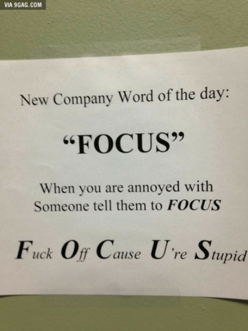 "9gag, Focus, and Fuck: VIA 9GAG.COM  New Company Word of the day:  ""FOCUS""  When you are annoyed with  Someone tell them to FOCUS  Fuck Off Cause Ure Stupid"