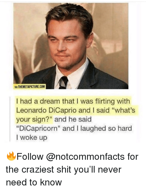"""A Dream, Leonardo DiCaprio, and Memes: VIA THEMETAPICTURECOM  I had a dream that I was flirting with  Leonardo DiCaprio and I said """"what's  your sign?"""" and he said  """"DiCapricorn"""" and I laughed so hard  I woke up 🔥Follow @notcommonfacts for the craziest shit you'll never need to know"""