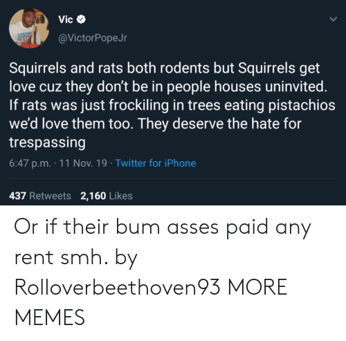squirrels: Vic  @VictorPopeJr  Squirrels and rats both rodents but Squirrels get  love cuz they don't be in people houses uninvited.  If rats was just frockiling in trees eating pistachios  we'd love them too. They deserve the hate for  trespassing  6:47 p.m. 11 Nov. 19 Twitter for iPhone  437 Retweets 2,160 Likes Or if their bum asses paid any rent smh. by Rolloverbeethoven93 MORE MEMES