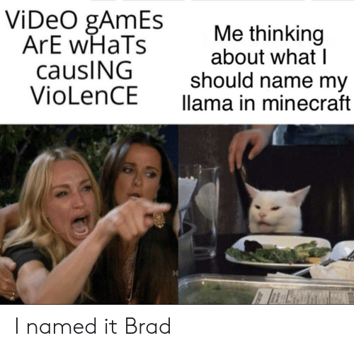 Brad: ViDeO gAmEs  ArE wHaTs  causING  VioLenCE  Me thinking  about what I  should name my  llama in minecraft I named it Brad