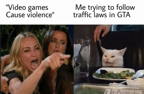 """Cause: """"Video games  Cause violence""""  Me trying to follow  traffic laws in GTA  J0y"""