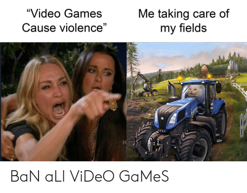 "Video Games, Games, and Video: ""Video Games  Me taking care of  my fields  Cause violence""  7 BaN aLl ViDeO GaMeS"
