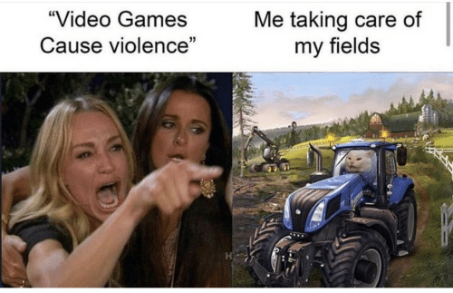 """Video Games, Games, and Video: """"Video Games  Me taking care of  my fields  Cause violence"""""""