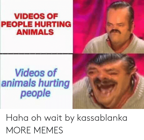 Oh Wait: VIDEOS OF  PEOPLE HURTING  ANIMALS  Videos of  animals hurting  people Haha oh wait by kassablanka MORE MEMES
