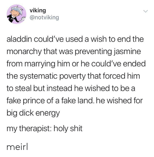 Aladdin: viking  @notviking  aladdin could've used a wish to end the  monarchy that was preventing jasmine  from marrying him or he could've ended  the systematic poverty that forced him  to steal but instead he wished to be a  fake prince of a fake land. he wished for  big dick energy  my therapist: holy shit meirl