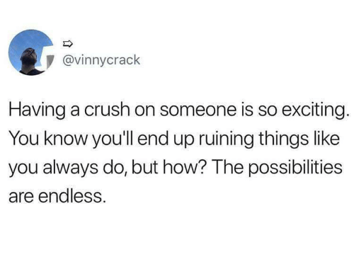 endless: @vinnycrack  Having a crush on someone is so exciting.  You know you'll end up ruining things like  you always do, but how? The possibilities  are endless.
