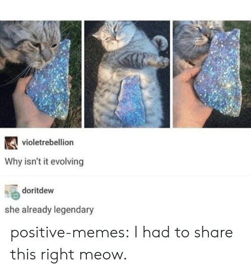 Memes, Target, and Tumblr: violetrebellion  Why isn't it evolving  doritdew  she already legendary positive-memes:  I had to share this right meow.