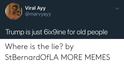 Dank, Memes, and Old People: Viral Ayy  @marvyayy  Trump is just 6ix9ine for old people Where is the lie? by StBernardOfLA MORE MEMES