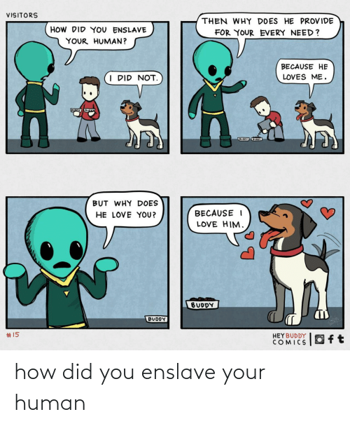buddy: VISITORS  THEN WHY DOES HE PROVIDE  HOW DID YOU ENSLAVE  FOR YOUR EVERY NEED?  YOUR HUMAN?  BECAUSE HE  I DID NOT.  LOVES ME.  BUODY UOY  BUT WHY DOES  HE LOVE YOU?  BECAUSE I  LOVE HIM.  BUDDY  BUDDY  2414  #15  HEYBUDDY  COMICS how did you enslave your human