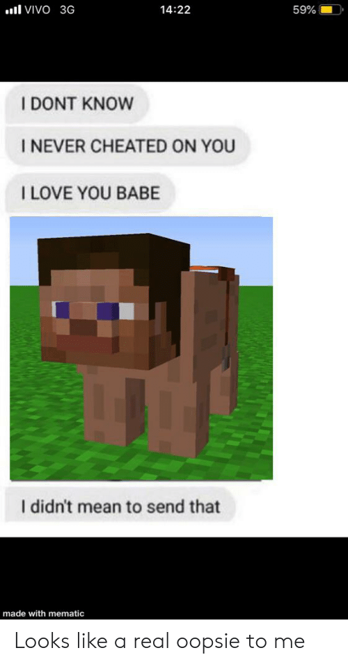 i love you babe: VIVO 3G  14:22  59%  I DONT KNOW  I NEVER CHEATED ON YOU  I LOVE YOU BABE  I didn't mean to send that  made with mematic Looks like a real oopsie to me