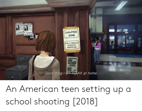 Gun Free Zone: VMISSING MISSING  GUN-FREE  ZONE  USE of TOBACCO  PRODUCTS  Good thing / left-my AK at home. An American teen setting up a school shooting [2018]