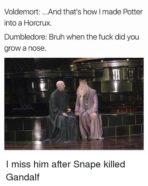 horcrux: Voldemort: .. .And that's how I made Potter  into a Horcrux.  Dumbledore: Bruh when the fuck did you  grow a nose.  @BetaSalmon I miss him after Snape killed Gandalf