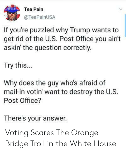 House: Voting Scares The Orange Bridge Troll in the White House