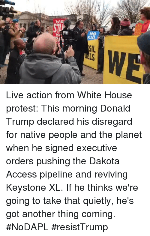 Pipeliner: W  NO  SIL Live action from White House protest: This morning Donald Trump declared his disregard for native people and the planet when he signed executive orders pushing the Dakota Access pipeline and reviving Keystone XL. If he thinks we're going to take that quietly, he's got another thing coming. #NoDAPL #resistTrump